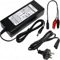6A 12V LiFePO4 Charger with mini croc clips