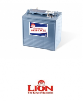 Lion Batteries - 830 Deep Cycle, 6V, 240Ah