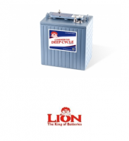 Lion Batteries - 820 Deep Cycle, 6V, 260Ah