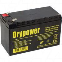 Drypower 12SB45WHR 12V UPS/Home Alarm Backup Battery