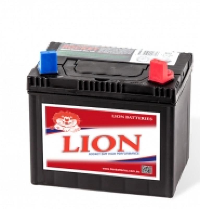 Lion Batteries - 406