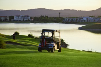 battery business, golf cart battery